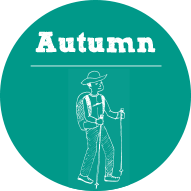 autumn_button_mini